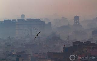 2012-12-India-Delhi-JCGanter-_G7_0095