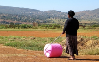 Pink-Hippo-Water-Roller