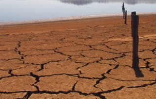 drought-Flickr