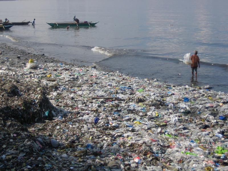 pacific-garbage-pat_32396